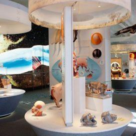 Utställningen Djuret människan på Naturhistoriska riksmuseet