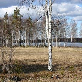 Sägenleden i Luleå