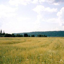 Ekoparken Halle-Hunneberg
